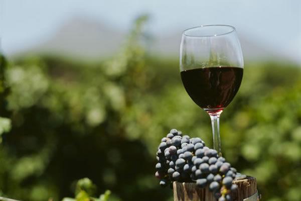 Nuevas oportunidades para el vino argentino en el Reino Unido