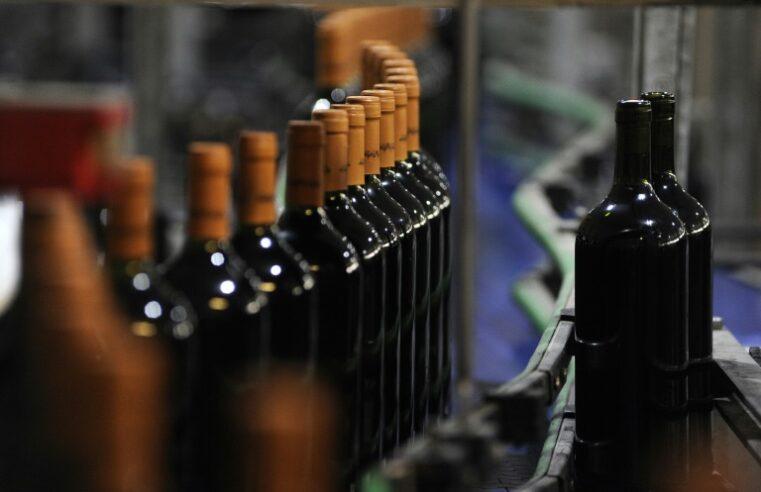 Bodegas de Argentina recomendó que los aumentos de vino no superen el 7%