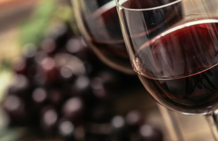 """Proyectan exportar en 2030 unos 250 millones de litros de vino: """"Es ambicioso pero cumplible"""""""