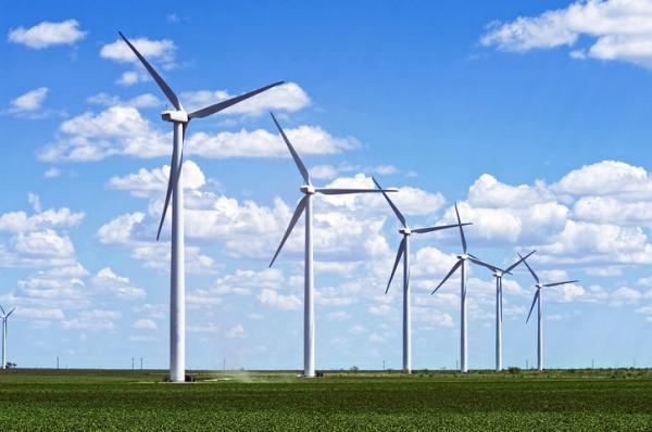 """Industria eólica global instó a los países del G20 a tener """"mayor liderazgo en la crisis climática"""""""