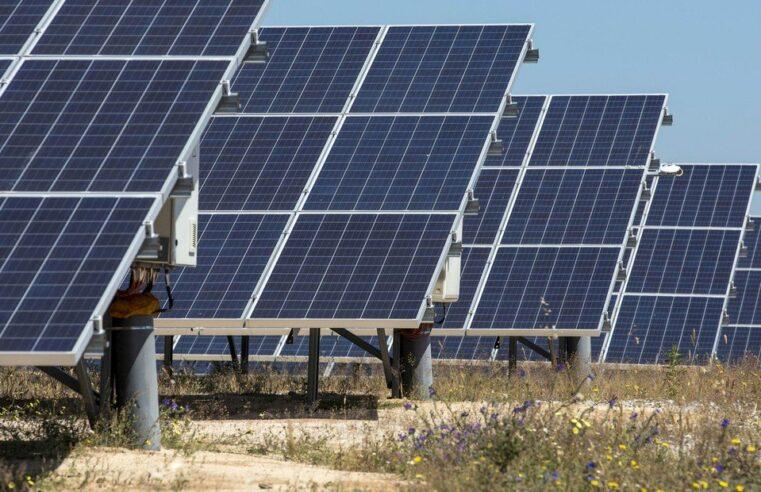 Se conocieron las ofertas para construir el primer parque solar de Neuquén